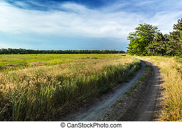 The rural dirt road, beautiful countryside on a sunny day