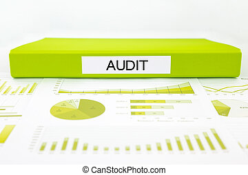 Audit reports, graphs, charts, data analysis and evaluation...