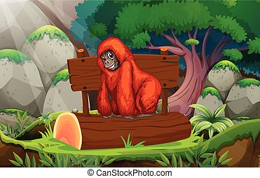Orangutan - illustration of an orangutan in a jungle