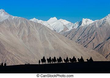 Caravan of travellers - Caravan of travellers riding camels...
