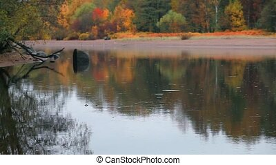 bright autumn landscape - Autumn landscape reflected in...