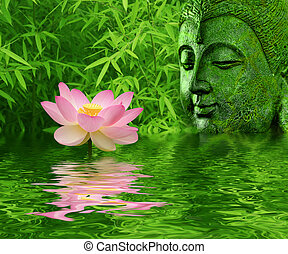 Lotus flower - lotus flower and decor