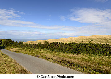 road and sea in the moor, Exmoor