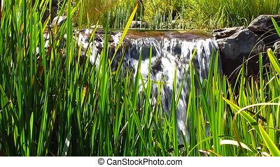 Waterfall - Small waterfall on a background of grass