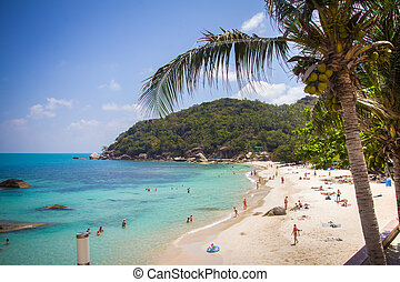 Tropical beach in Thailand on Koh Samui - Tropical beach in...