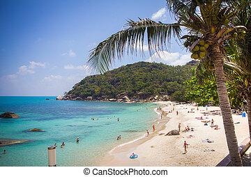 Tropical beach in Thailand on Koh Samui - Tropical beach in...