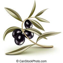Black olives branch