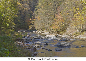 Mountain River in Autumn - A rocky mountain river runs...