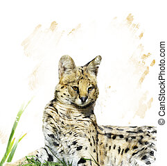 Serval Portrait - Digital Painting Of Serval Portrait