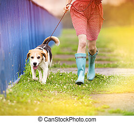 Young woman in wellies walk her dog - Unrecognizable young...