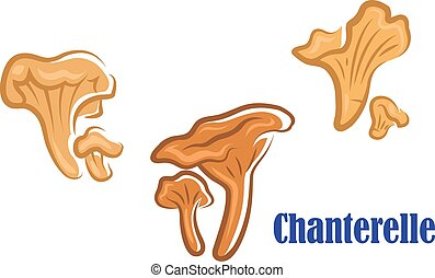 Chanterelle mushroom icons showing three different views of...
