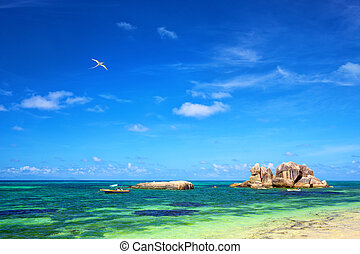 Praslin coastline - Typical granite rocks at Praslin beach,...