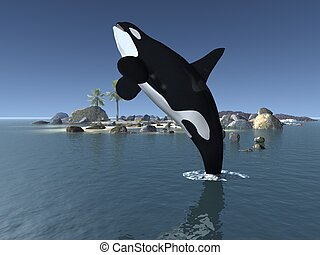 Orca - Killer Whale - 3D Render of an Orca - Killer Whale