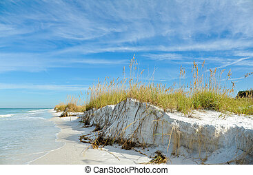 Beautiful Florida Coastline - Beautiful Sand Dunes and Sea...