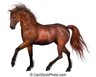 美しい, 馬