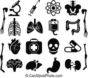 Vector set of internal human organs icons