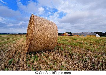 Bale of straw on farmland