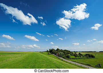 Summer background with fresh green grass and bright blue sky...