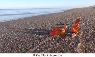 amber pieces on sea beach sand - beautiful natural amber...