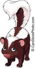 Skunk - Illustration of very cute skunk
