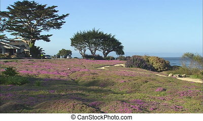 Monterey Lovers Point Park WS