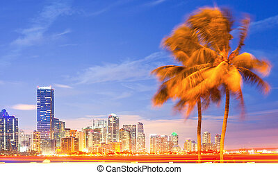 City of Miami Florida, night skyline palm trees and moving...