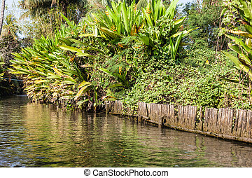 Jungle Canal - a canal in the misty thai jungle or...