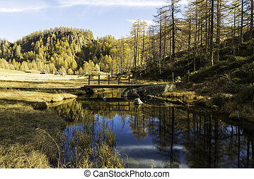 Devero Alp, reflections in the river in autumn season -...