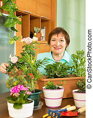 Smiling mature woman working with flowers in pots in home