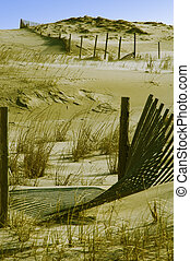 Dunes and Fence - Dunes are an act of nature. Fences are an...