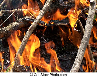 Fire place - fire place with sticks, dries leaves, and...