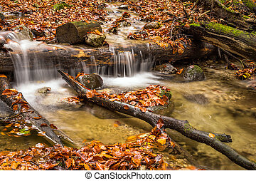 Mountain stream with waterfalls