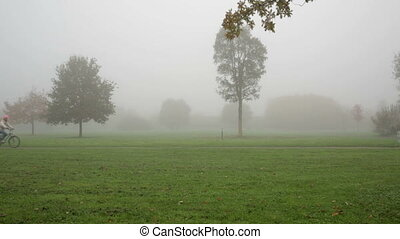 cycling through foggy park - foggy morning in frankfurt city...