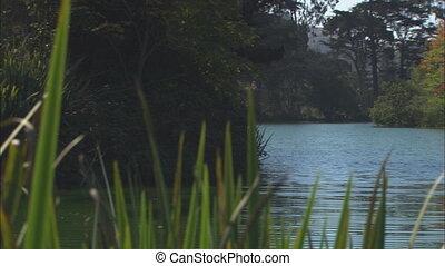Pond With Oriental Gazebo Panning