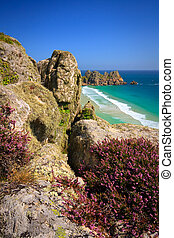 Porthcurno, Cornwall, UK - Heather on the cliffs over...
