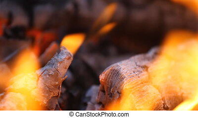 Bright burning wood, campfire macro