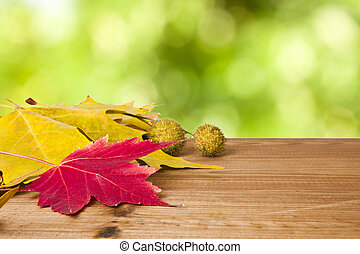 autumn - wooden table with scenery of fallen autumn leaves