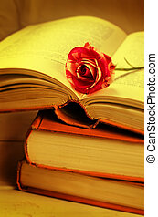 stack of books with flower rose