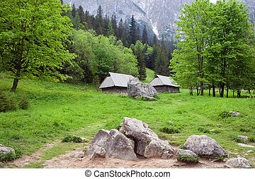 Beautiful Valley in the Tatra Mountains