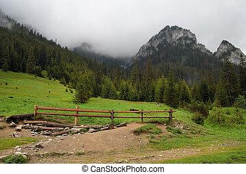 Koscieliska Valley in Tatra Mountains