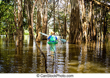 Kayaking at a mangrove in Amazon River