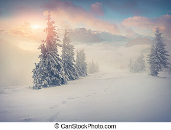 Beautiful winter sunrise in the foggy mountains
