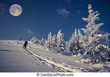 Travel in winter mountains at night with stars and a full...