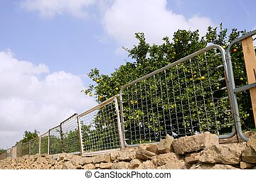 fence on orange tree made of recycled bed structures -...