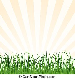 Landscape background with grass and sky. Vector Illustration