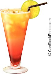 Tequila sunrise cocktail realistic - Tequila sunrise...