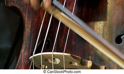 musical instrument bass large
