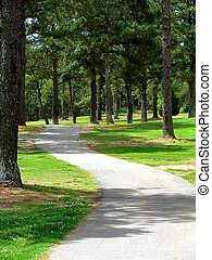 tree lined path - beautiful serene scenic winding tree lined...