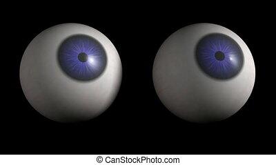 Eyeballs looking. CG. hd