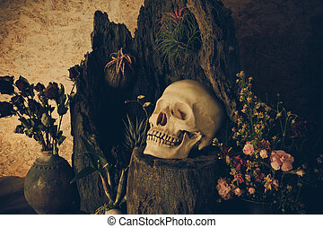 Still life with a human skull with desert plants, cactus,...